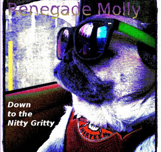 Featured Artist on Melody Fusion: Renegade Molly